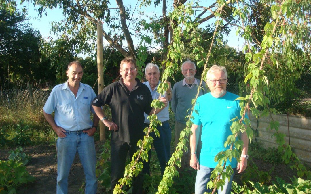 We're 'hoppy' to report good progress